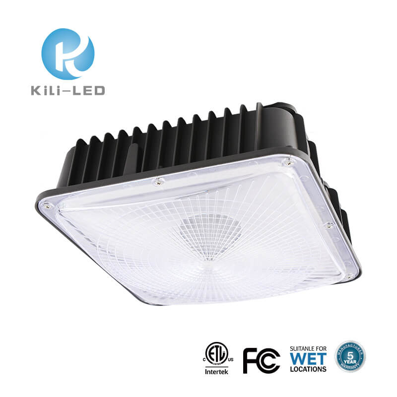 (CPSW) LED Canopy Lights