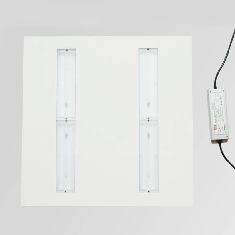 (CPCM) Europe Canopy Light